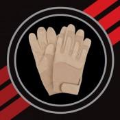 Gloves (6)